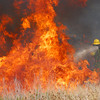 A Cedar Creek firefighter battles a flare up in a field off of Cemetery Road Friday afternoon as crews try to contain a wild fire that is buring in Cleveland County.<br /> Kyle Phillips/The Transcript