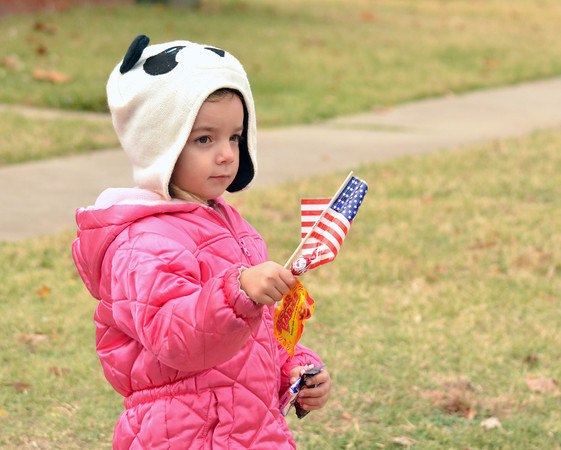Aliyah Keller, 3, waves an American Flag Sunday as she watches  the Veterans Day parade travel down Jenkins Ave.<br /> Kyle Phillips/The Transcript
