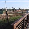 Vet park 14