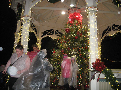 BOB SANDRICK / GAZETTE Despite the rain, people snap photographs Saturday in front of the Christmas tree in the Uptown Park gazebo during Medina's 33rd annual Candlelight Walk.