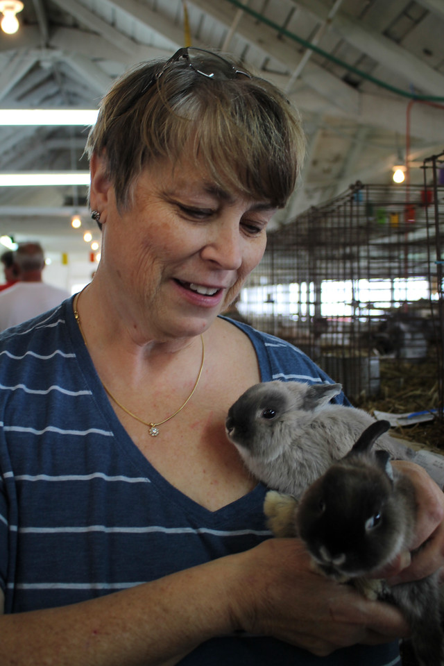 """LAWRENCE PANTAGES / GAZETTE Renee Burns was reunited Sunday at the Medina County Fair with two Netherlands Dwarf bunnies that she reported stolen Thursday night from Barn 25. Burns said both had been sold before being stolen to famillies with young children, who were """"devastated"""" to learn they would not be receiving them on Sunday, the last day of the fair. But the rabbits were discovered in a nearby restroom and returned to Burns when she arrived at the barn for the fair's last day."""