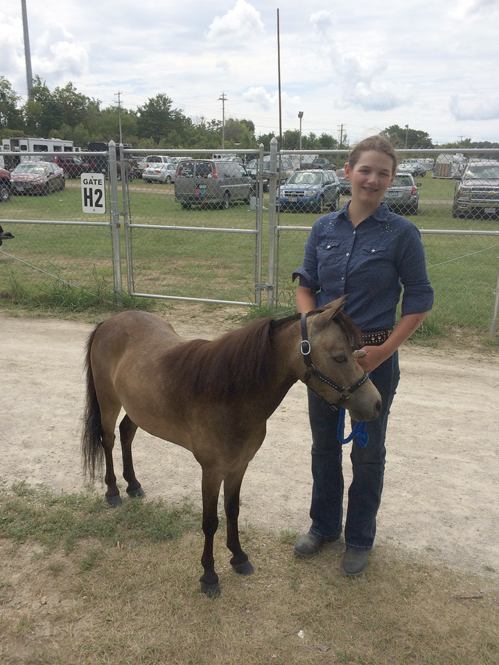ANNIE RYAN HYRA / SPECIAL TO THE GAZETTE Natalie Vallant of Wadsworth took a third place in a 4-H Youth mini-horse competition.