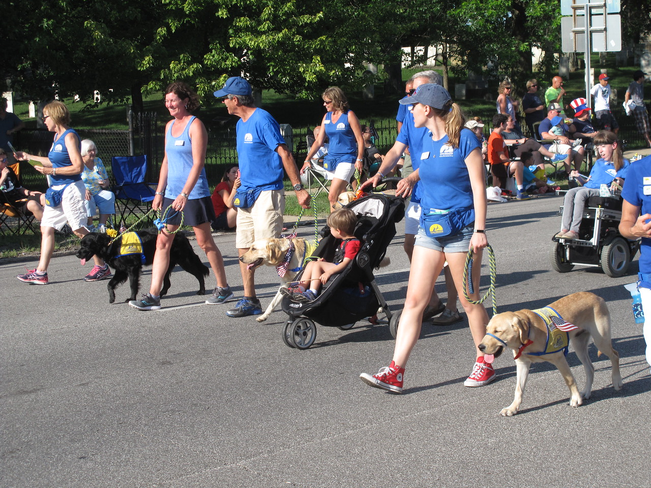 Pets walk with their people at the Medina Independence Day parade. BOB FINNAN / GAZETTE