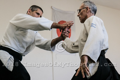 Practicing Aikido in Jerusalem, Israel