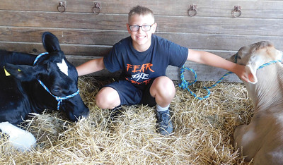 Logan Rieth, 11, of York Township, prepares for Mondays start to the Medina County Fair alongside his cows Timmy and Brownie. JONATHAN DELOZIER / GAZETTE