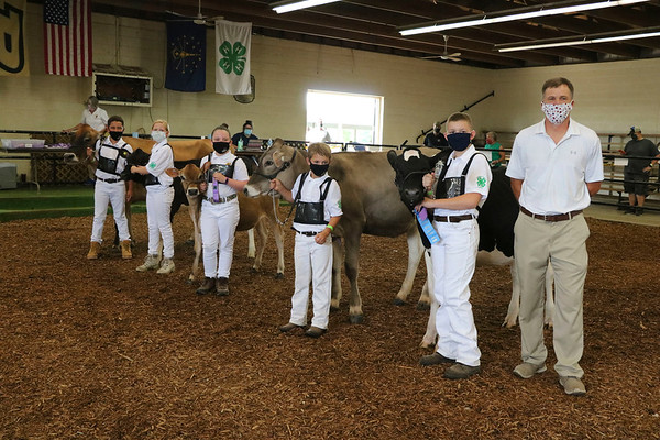 Judge Jeff Price, right, stands with those who earned honor distinction during beginner showmanship, along with showmanship winner Conner Hively, who stands left of Price. Also pictured are Hudson Yoder, Lydia Paul, Abigail Gordon and Owen Nisen.