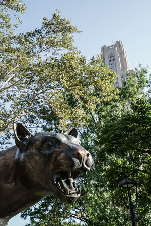 A Pitt Panther statue, a gift of the 1999 Student Body, dedicated in August 2001, stands near the University of Pittsburgh. The panther serves as the official mascot of the University and used as a nickname for its athletic teams.