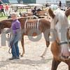 Bayli Seymour, 10, of Gilmer, leads her horse Okie to an arena at Texas Rose Horse Park Saturday August 27, 2016. The Bureau of Land Management held a wild horse adoption and Youth Wild Horse Trail Challenge Saturday. Youth had 90 days to foster a yearling mustang before adopting the animal or auctioning it to the highest bidder Saturday. <br /> <br /> (Sarah A. Miller/Tyler Morning Telegraph)