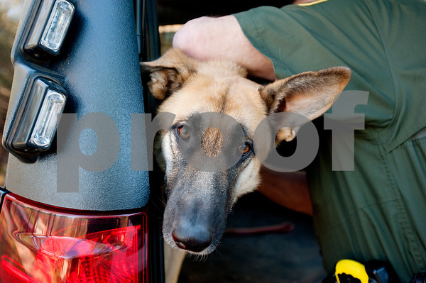 photo by Sarah A. Miller/Tyler Morning Telegraph  Cherokee Constable Eddie Lee took initiative and used his own money to get German Shepherd Cody to use on the job. Cody will be used as a defensive animal staying with the constable on the job and going with him to schools.