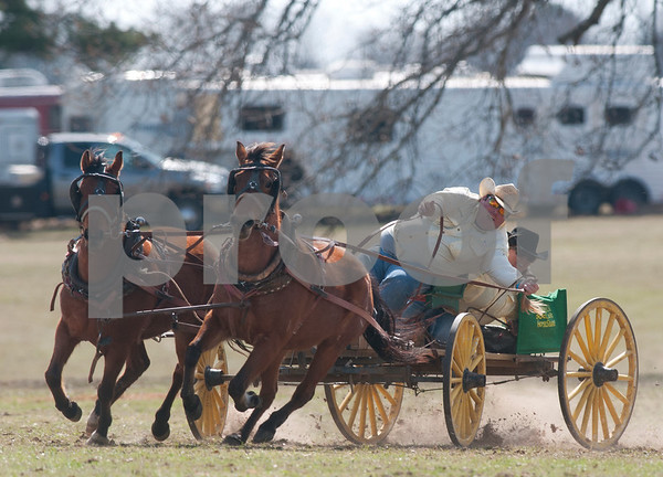 photo by Sarah A. Miller/Tyler Morning Telegraph  Team Hartwick Horshoeing from Prim, Ark. turns a corner with their buckboard wagon at the 1836 Chuckwagon Race in Neches, Texas Friday March 7, 2014. The 1836 Chuckwagon Race at Diamond B Ranch is a week long celebration of western culture centering around Texas Independence Day weekend. The race is sanctioned by the National Championship Chuckwagon Race and Texas Chuckwagon Race Association. Races continue Saturday and Sunday.