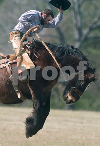photo by Sarah A. Miller/Tyler Morning Telegraph  Patrick Wood of Lindale, Texas, rides a bronco at the 1836 Chuckwagon Race in Neches, Texas Friday March 7, 2014. The 1836 Chuckwagon Race at Diamond B Ranch is a week long celebration of western culture centering around Texas Independence Day weekend.