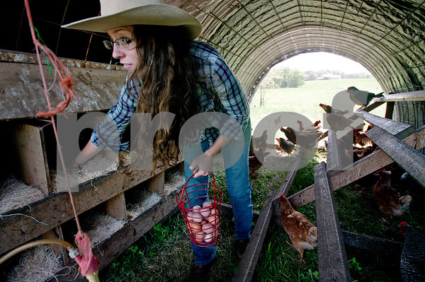 photo by Sarah A. Miller/Tyler Morning Telegraph  Alissa Rhodes, 24, operator of Lonesome Lady Ranch, collects eggs from her hens Tuesday April 7, 2015. Lonesome Lady Ranch is a local family farm located in the New Harmony community just outside of Tyler. The farm raises poultry, eggs, lamb, and commercial cattle. The animals are pasture raised using rotational grazing management and fed diets free of added growth hormones, drugs, or genetically modified food used by the commercial food industry. Rhodes sells her eggs weekly at the Rose City Farmers Market held at the Juls parking lot Saturdays in Tyler. Rhodes is a recent recipient of the Texas Young Farm Grant, which provides  matching funds to help new ranches take root.