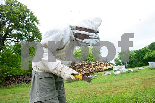 photo by Sarah A. Miller/Tyler Morning Telegraph  Beekeeper Dick Counts looks at bees on a frame from a beehive in his yard Thursday April 23, 2015 in Chapel Hill. Counts, who is president of the East Texas Beekeepers Association, was preparing thousands of bees to be ready for delivery to new homes.