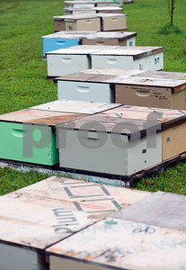 photo by Sarah A. Miller/Tyler Morning Telegraph  Boxes of bees reside in beekeeper Dick Counts' yard Thursday April 23, 2015 in Chapel Hill as Counts prepares the boxes to be delivered to new homes. Counts is president of the East Texas Beekeepers Association.