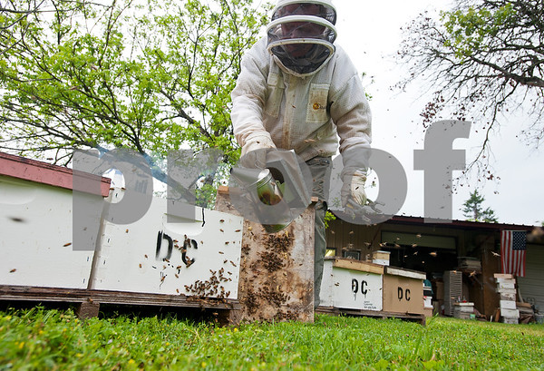 photo by Sarah A. Miller/Tyler Morning Telegraph  Beekeeper Dick Counts uses a smoker to calm bees before checking frames from beehives in his yard Thursday April 23, 2015 in Chapel Hill. Counts, who is president of the East Texas Beekeepers Association, was preparing thousands of bees to be ready for delivery to new homes.
