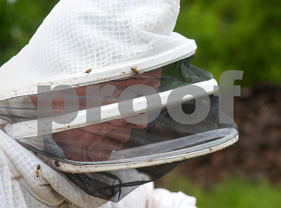 photo by Sarah A. Miller/Tyler Morning Telegraph  Beekeeper Dick Counts works with boxes of bees in his yard Thursday April 23, 2015 in Chapel Hill. Counts, who is president of the East Texas Beekeepers Association, was preparing thousands of bees to be ready for delivery to new homes.