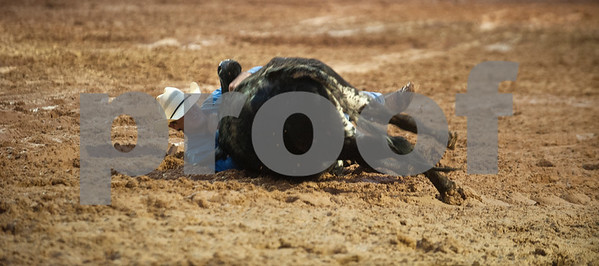A competitor wrestles a steer at the I-20 Team Real Estate Lindale Championship Rodeo presented by Ram Rodeo  Thursday night. The rain stopped just in time for the rodeo to start. The rodeo continues Friday and Saturday with gates opening at 6 p.m.    (photo by Sarah A. Miller/Tyler Morning Telegraph)