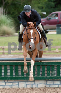photo by Sarah A. Miller/Tyler Morning Telegraph  Matt Cyphert of Dallas competes with horse MTM Sunshine in the three-foot pre green division at the Show Jumping Classic Thursday at Texas Rose Horse Park in Tyler. The hunter/jumper show continues through May 19, and the Southwest Classic will be held May 22-26 at Texas Rose Horse Park. Competitors in the jumper competition must complete a specific amount of jumps in a particular order on a timed course. Hunters are also scored on their ability to jump obstacles, but they are also judged in their style of jumping, manners, pace and beauty.