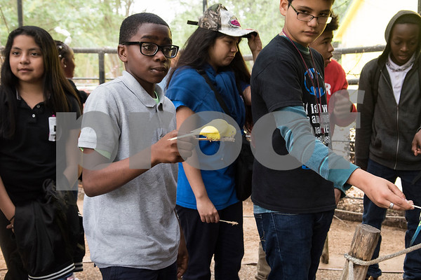 Boulter Middle School sixth grader De'Jaylon Beall feeds a bird at the Caldwell Zoo in Tyler Tuesday May 23, 2017.  (Sarah A. Miller/Tyler Morning Telegraph)
