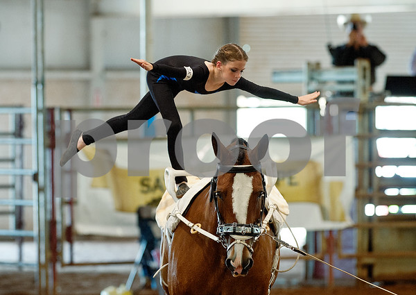 Horse Vaulting