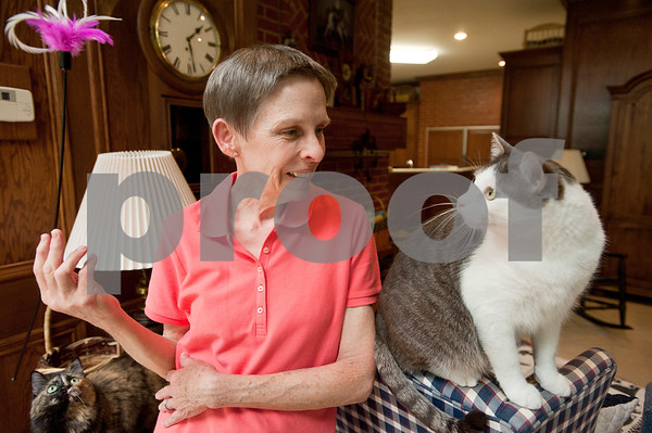 photo by Sarah A. Miller/Tyler Morning Telegraph  Tyler resident Mary Ann Clifford spends time with Jack Nicklaus, one of her cats, at her home Monday. Clifford is the author of new book Reflections of a Cat Whisperer. The autobiography provides information on the many facets of felines, inspirational and humorous stories about Clifford's cat encounters, as well as advice on how she handled cats with physical and emotional disabilities.
