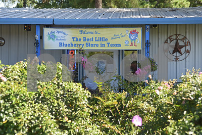 The store at Echo Springs Blueberry Farm is pictured June 24, 2016 in Brownsboro. Echo Springs has over 50 acres of producing berry plants.  (Sarah A. Miller/Tyler Morning Telegraph)