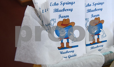A blueberry recipe guide is for sale in the store at Echo Springs Blueberry Farm in Brownsboro Friday June 24, 2016.   (Sarah A. Miller/Tyler Morning Telegraph)