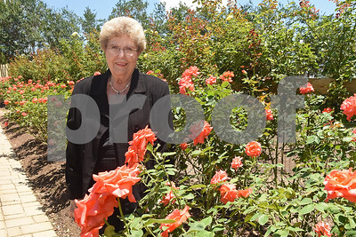 Certified Roses, Inc. president Shirley Staples is pictured in the test garden on their property in Tyler June 24, 2016. Staples is retiring after 56 years with the company.   (Sarah A. Miller/Tyler Morning Telegraph)