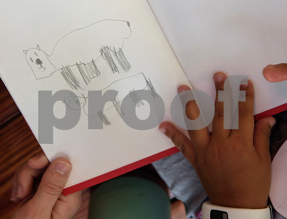 Camper Julia Mitchell, 6, has a drawing of guinea pigs in her observation journal during the zoo's summer camp on Friday Aug. 3, 2018.  (Sarah A. Miller/Tyler Morning Telegraph)