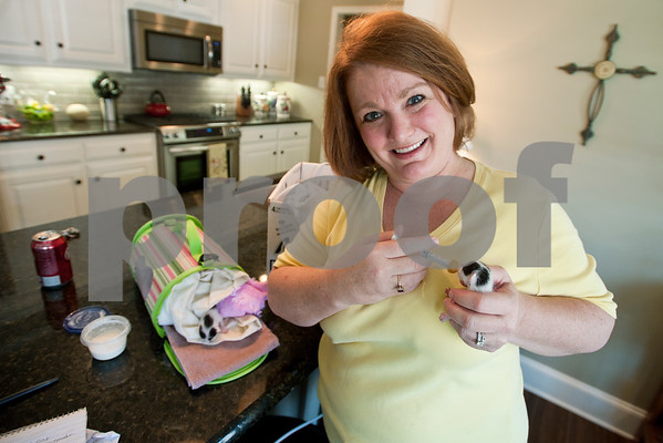 photo by Sarah A. Miller/Tyler Morning Telegraph  Francie Hodges of Tyler holds feeds milk to a three-day-old kitten she is raising in her home Friday July 12, 2013. Hodges rescued a litter of feral kittens. She feeds them milk every three hours.