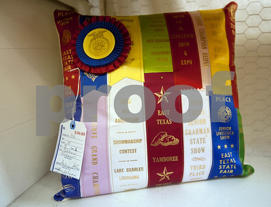 Aubrey Ellis, 10, of Henderson, entered this handmade pillow in the decorative accessories competition for the East Texas State Fair in Tyler Thursday Sept. 10, 2015. The East Texas State Fair runs Sept. 25 to Oct. 4.   (Sarah A. Miller/Tyler Morning Telegraph)