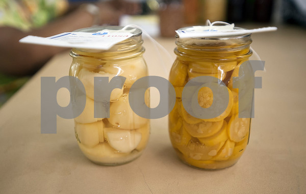 A can of potatoes and a can of squash sit on a table waiting to be checked in at Building A at the East Texas State Fairgrounds in Tyler Thursday Sept. 10, 2015. The East Texas State Fair runs Sept. 25 to Oct. 4.   (Sarah A. Miller/Tyler Morning Telegraph)