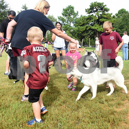 Harris Durrett, 6, Lloyd Pierre Power, 4, and Sendra Power, 2, visit with dogs during the grand opening of Sunrise Paw Park, 114515 County Road 166, Baggett Road in Tyler. The new dog park has separate areas for large dogs and small dogs as well as drinking fountains and a dog wash station. The Tyler Sunrise Rotary Club and the Anderson-Vukelja Foundation collaborated on the project which was privately funded.   (Sarah A. Miller/Tyler Morning Telegraph)
