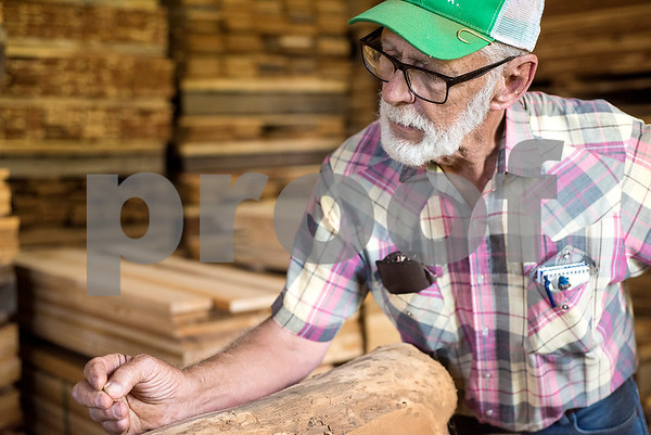 Lacey Wilcox talks about a certain cut of lumber at Wilcox Timber & Lumber in Rusk, Texas, on Tuesday, Sept. 12, 2017. Wilcox Timber & Lumber is a family-owned specialty sawmill offering quality woods like cedar, mesquite and cypress. They began their logging operation in 1980 and sawmill operation in 1997. (Chelsea Purgahn/Tyler Morning Telegraph)