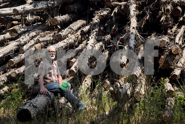 Lacey Wilcox sits for a portrait at Wilcox Timber & Lumber in Rusk, Texas, on Tuesday, Sept. 12, 2017. Wilcox Timber & Lumber is a family-owned specialty sawmill offering quality woods like cedar, mesquite and cypress. They began their logging operation in 1980 and sawmill operation in 1997. (Chelsea Purgahn/Tyler Morning Telegraph)