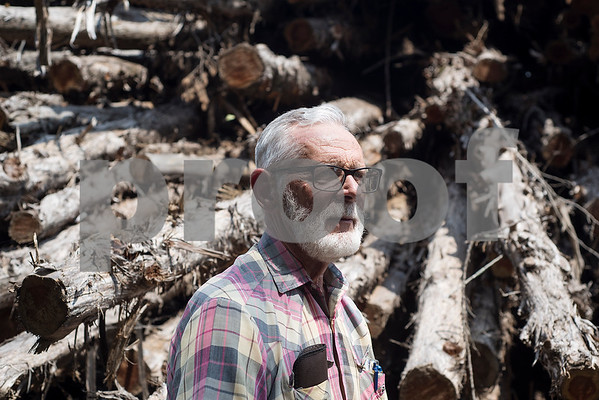 Lacey Wilcox poses for a portrait in front of some of his timber stock at Wilcox Timber & Lumber in Rusk, Texas, on Tuesday, Sept. 12, 2017. Wilcox Timber & Lumber is a family-owned specialty sawmill offering quality woods like cedar, mesquite and cypress. They began their logging operation in 1980 and sawmill operation in 1997. (Chelsea Purgahn/Tyler Morning Telegraph)