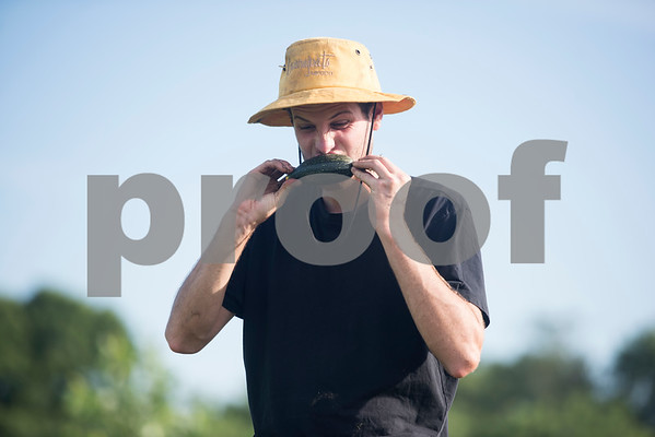 Caleb Groth eats a fresh zucchini at Red Moon Farm in Van June 21, 2017. Red Moon Farm is an organic farm and CSA (community-supported agriculture). In the CSA system customers become members who buy a share of the harvest from the farm and the farm commits to growing the produce for each member.   (Sarah A. Miller/Tyler Morning Telegraph)