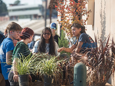 Longview High School junior Angelica Labarria, 16, far right, directs where plants should be placed in their planter during the Horticulture Show Landscape Design Competition at the East Texas State Fair on Wednesday Sept. 19, 2018. Teams from local high schools competed in designing and making a themed 4 foot by 7 foot planter box.  (Sarah A. Miller/Tyler Morning Telegraph)