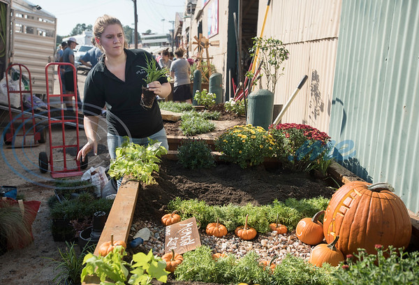 Kathryn Brown, 17, a senior at Big Sandy High School, competes in the Horticulture Show Landscape Design Competition at the East Texas State Fair on Wednesday Sept. 19, 2018. Teams from local high schools competed in designing and making a themed 4 foot by 7 foot planter box.  (Sarah A. Miller/Tyler Morning Telegraph)