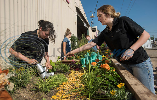 Big Sandy High School seniors Cheyenne Flores, 17, and Tiffany Shelton, 18, design a Wizard of Oz themed planter during the Horticulture Show Landscape Design Competition at the East Texas State Fair on Wednesday Sept. 19, 2018. Teams from local high schools competed in designing and making a themed 4 foot by 7 foot planter box.  (Sarah A. Miller/Tyler Morning Telegraph)