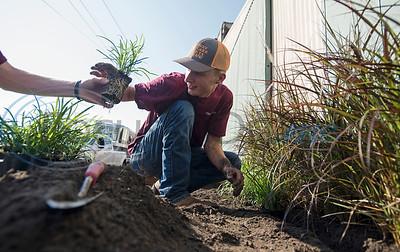 Horticulture Show Landscape Design Competition