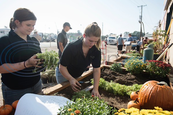 Misty Wilson, 16, a junior, and Kathryn Brown, 17, a senior at Big Sandy High School, competes in the Horticulture Show Landscape Design Competition at the East Texas State Fair on Wednesday Sept. 19, 2018. Teams from local high schools competed in designing and making a themed 4 foot by 7 foot planter box.  (Sarah A. Miller/Tyler Morning Telegraph)