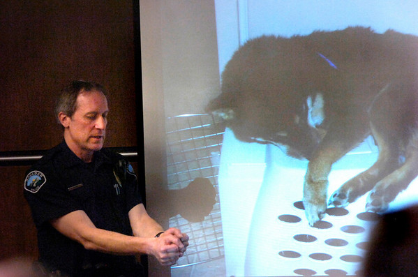 Boulder Police Officer Officer Rick French demonstrates how Rex the dog's paws were bound in front of a photo of Rex after the dog was rescued from being taped to a refrigerator during the case against Abby Toll Monday afternoon in Boulder. <br /> Photo by Paul Aiken / The Camera / Monday April 12, 2010