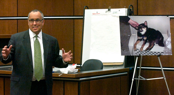 Boulder County Prosecutor David Cheval talks to the jury in front of a photo of Rex the dog during closing proceedings at the Boulder County Courthouse Tuesday morning. Abby Toll is being tried this week on a felony animal cruelty charge after taping her boyfriend's dog to a refrigerator last spring.<br /> Photo by Paul Aiken / The Boulder Camera / April 13, 2010
