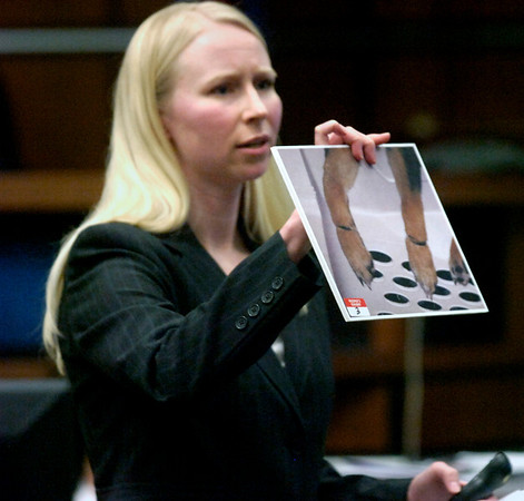 Boulder County Prosecutor Lisa Pearson shows photos of Rex and the hairbands that were wrapped around his legs to the jury during closing arguments. Abby Toll is being tried this week on a felony animal cruelty charge after taping her boyfriend's dog to a refrigerator last spring.<br /> Photo by Paul Aiken / The Camera / Tuesday April 13, 2010