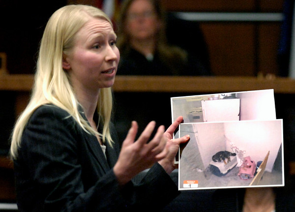 Boulder County Prosecutor Lisa Pearson shows photos of Rex to the jury during closing arguments. Abby Toll is being tried this week on a felony animal cruelty charge after taping her boyfriend's dog to a refrigerator last spring.<br /> Photo by Paul Aiken / The Camera / Tuesday April 13, 2010