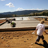 "Andi O'Conor circles the  newly laid concrete slab of her new home. O'Conor lost her home in the Fourmile Fire.<br /> FOR A VIDEO AND MORE PHOTOS OF ANDI MAKING HER ARTWORK GO  TO  <a href=""http://WWW.DAILYCAMERA.COM"">http://WWW.DAILYCAMERA.COM</a> <br /> Photo by Paul Aiken / The Camera / August 29 2011"