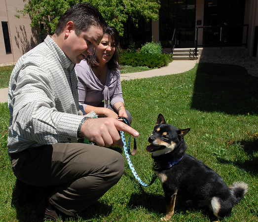"Shannon and Amy Park play with their dog Yoshi, after the Abby Toll sentencing. Yoshi was the dog abused by Abby Toll.<br /> Abby Toll  was  taken into custody after sentencing. She will spend 30 days in jail for and 3 years probation for  felony animal cruelty. For more photos, go to  <a href=""http://www.dailycamera.com"">http://www.dailycamera.com</a>.<br />  Cliff Grassmick / July 9, 2010"