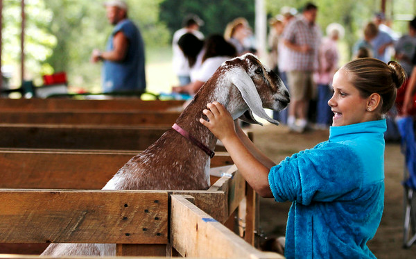 4-H Youth Fair in Pittsfield-081614