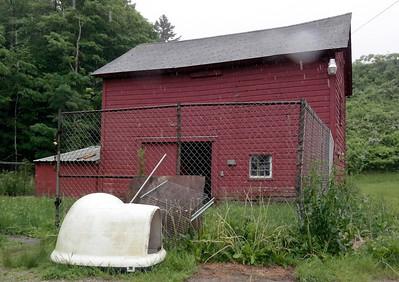 North Adams Animal Shelter 061314